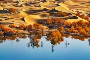 Raffles Merit Award E-Certificate - Ching Ching Chan (Hong Kong)  The Desert With Water