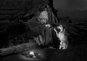 PhotoVivo Gold Medal - Ka Yi Winnie Tse (Hong Kong)  Lonely Woman
