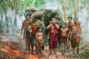 APAS Honor Mention e-certificate - Say Boon Foo (Malaysia)  Elephants Festival 2