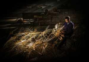 ICPE Gold Medal - Juanjuan Shen (China)  Craft