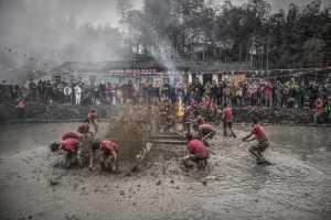 PhotoVivo Bronze Medal - Huifen Wang (China)  Traditional Event 4