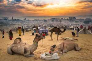 Honor Mention - Pinkesh Bhati (India)  Pushkar In A Frame