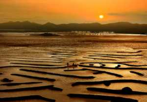 PhotoVivo Gold Medal - Fengmei Zheng (China)  Golden Beach