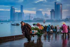 PhotoVivo Gold Medal - Deying Huang (China)  Vendor