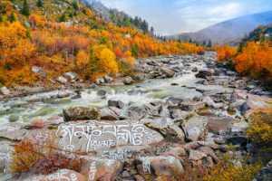 Circuit Merit Award e-certificate - Haoping Pan (China)  Autumn River