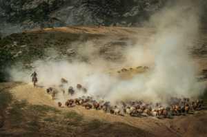 PhotoVivo Gold Medal - Chenglin Zheng (China)  Scene Changes 8