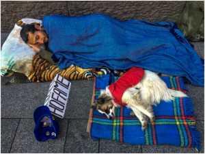 APU Gold Medal - Wee Seng Goh (Singapore)  Man And Dog1