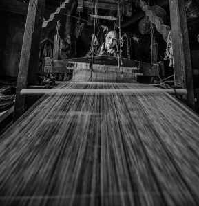 PhotoVivo Gold Medal - Chaoyang Cai (China)  Spinning