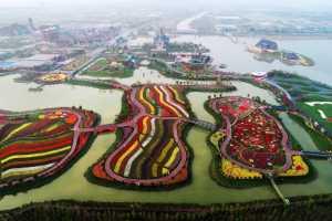 Circuit Merit Award e-certificate - Guomei Yang (China)  Blossoms In Water Town