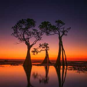 PhotoVivo Gold Medal - Hsiang Hui (Sylvester) Wong (Malaysia)  Sunset Color Of Walakiri