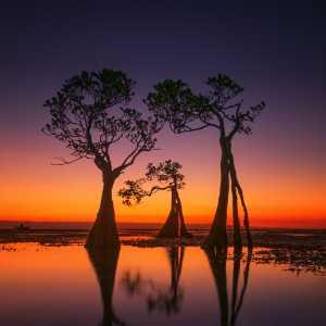 Circuit Merit Award e-certificate - Hsiang Hui (Sylvester) Wong (Malaysia)  Sunset Color Of Walakiri