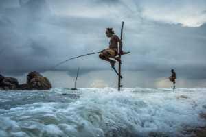 PhotoVivo Gold Medal - Xiaoqing Chen (China)  Fishing 16