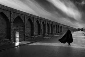 PhotoVivo Gold Medal - Xiuling Li (China)  Shadow
