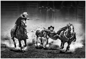 PhotoVivo Gold Medal - Sally Leung (Hong Kong)  Cowboy Tricks