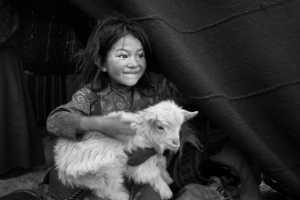 APU Winter Merit Award E-Certificate - Ming Li (China)  Girl With The Lamb