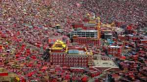 APU Spring Honor Mention E-Certificate - Kai Zheng (China)  Seda La Rong Wuming Institute Of Buddhism