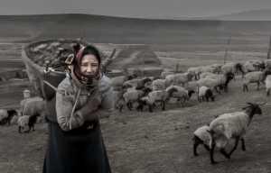 APAS Honor Mention e-certificate - Xiaoli Zhang (China)  Liangshan Herd