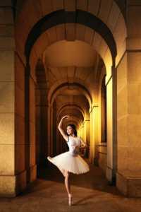 Circuit Merit Award e-certificate - Barry Wong (Hong Kong)  The Art Of Ballet 2