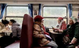 APU Honor Mention e-certificate - Zhujun Ying (China)  On The Green Train