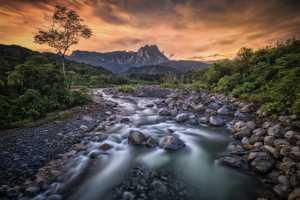 APU Honor Mention e-certificate - Hsiang Hui (Sylvester) Wong (Malaysia)  Mt Kinabalu