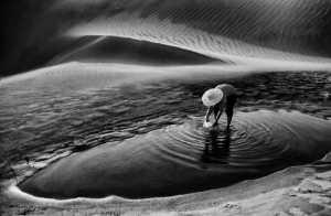 PhotoVivo Gold Medal - Aris Sanjaya (Indonesia)  Oasis