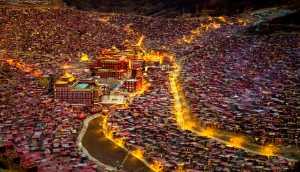PhotoVivo Gold Medal - Jing Li (China)  Guide