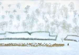 PhotoVivo Gold Medal - Zhizhou Jiang (China)  Pastoral On The Snowfield
