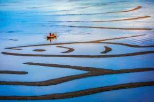 PhotoVivo Gold Medal - Shun Zhang (China)  On Sea Surface