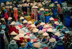 Circuit Merit Award e-certificate - Dao Tien Dat (Vietnam)  Vinh Truong Fish Market