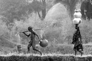 PhotoVivo Gold Medal - Vijay Mailar (India)  Follow On The Path Of Life