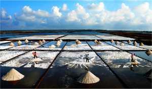 APU Winter Gold Medal - Duc Toai Le (Vietnam)  Harvesting Salt 2