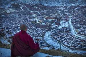 PSA HM Ribbons - Liansan Yu (China)  Monk In Red 2