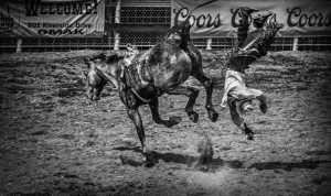 APU Gold Medal - Xuehai Lu (China)  Tumble Off A Horse