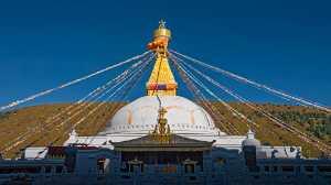 APAS Honor Mention e-certificate - Wenwei Wang (China)  Sanskrit Sound Among The Pagoda