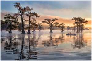 ICPE Honor Mention e-certificate - Thomas Lang (USA)  Autumn In Caddo Lake