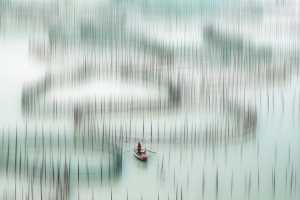 SIPC Merit Award - Min Li (China)  Rowing In The Picture
