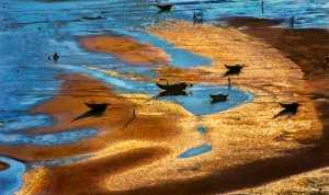 Circuit Merit Award e-certificate - Tong Hu (China)  Beautiful Beach