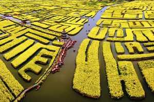 ICPE Honor Mention E-Certificate - Ping Lu (China)  Duotian Scenery