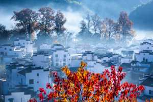 APAS Gold Medal - Hongxin Zhang (China)  Town In The Mist