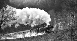 PhotoVivo Gold Medal - Frank Hausdoerfer (Germany)  Steam Train In Gehlberg