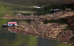 PhotoVivo Gold Medal - Zhoufan Cui (China)  Disappearing Job-River Rafting Logger