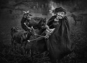 FIP Gold Medal - Ching Ching Chan (Hong Kong)  The Goat Lady