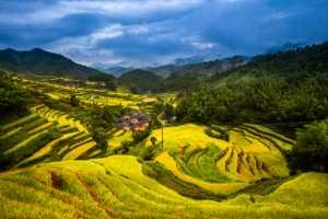 PhotoVivo Gold Medal - Maosheng Lv (China)  Terraced Field