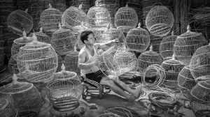 APU Honor Mention E-Certificate - Jin Huat Yeoh (Malaysia)  Bird Cage Maker