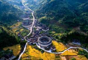 FIP Ribbon - Chaoyang Cai (China)  Overlook 1