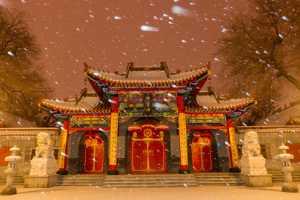 PhotoVivo Gold Medal - Ying Shi (China)  Snowy Night