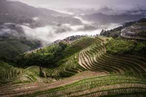 PhotoVivo Honor Mention e-certificate - Hsiang Hui (Sylvester) Wong (Malaysia)  Longji Rice Terrace