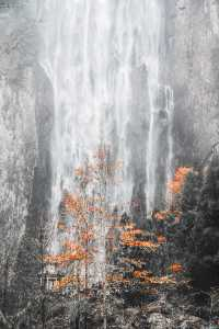 PhotoVivo Gold Medal - Aiping Yang (China)  Waterfall