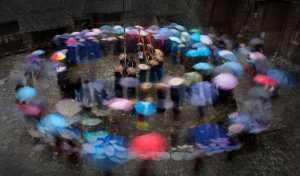 APU Honor Mention e-certificate - Senliang Li (China)  The Song Of The Rain