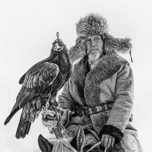 PhotoVivo Gold Medal - Xiping An (China)  The Falcon